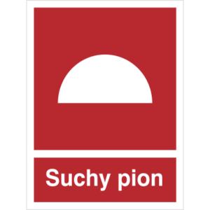 Znak suchy pion piktogram bezpieczeństwa przeciwpożarowy oznakowanie bezpieczeństwa pożarowego czerwone fotoluminescencyjne płyta pvc folia naklejka